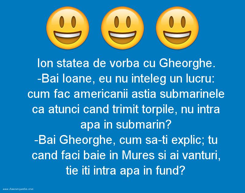 Bancuri cu Gheorghe - Ion statea de vorba cu Gheorghe