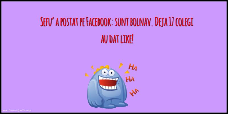 Glume - Sefu a postat pe Facebook