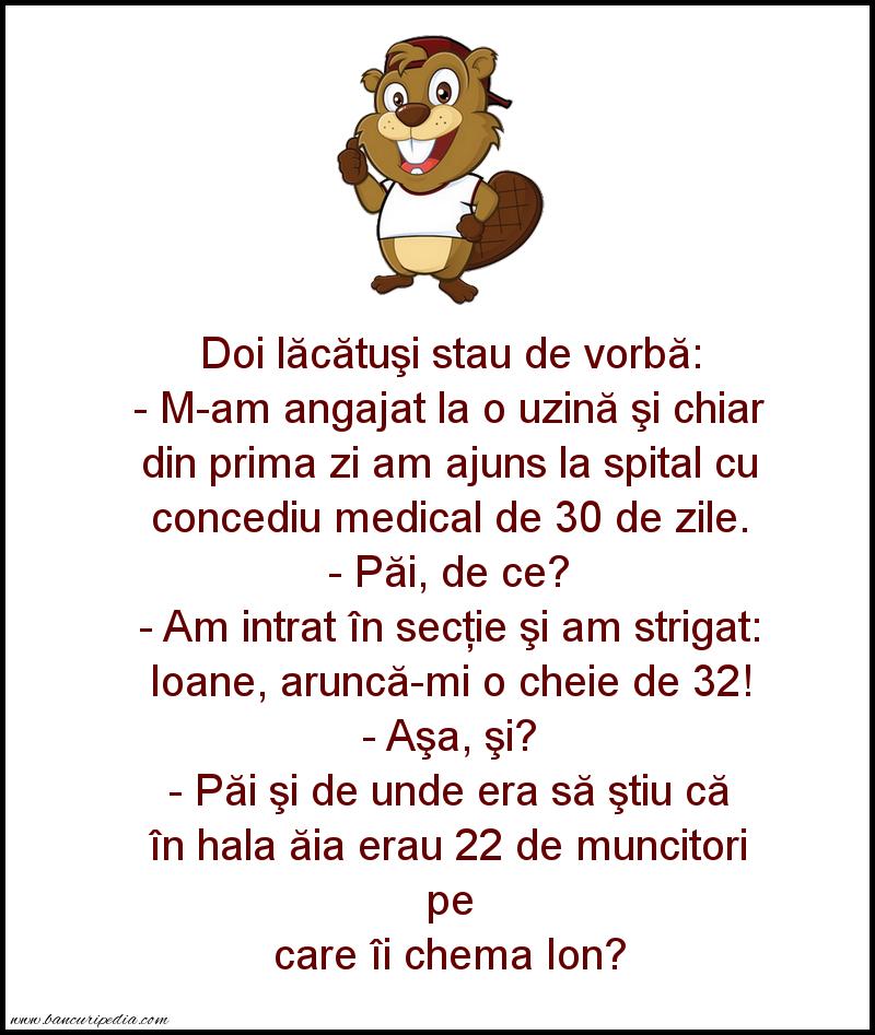 Glume - 32 de Ion